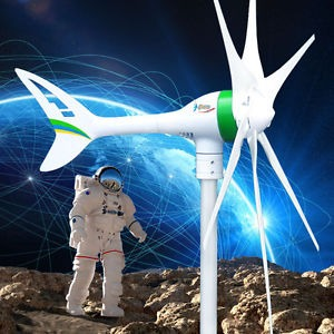 gallery/1kw wind turbine $650